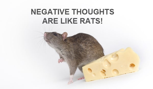 negative thoughts are like rats