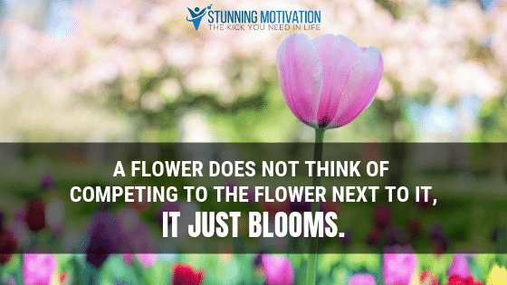 A flower does not think of competing to the flower next to it, it just blooms.