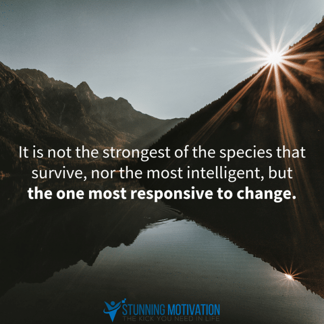 It is not the strongest of the species that survive, nor the most intelligent, but the most responsive to change.