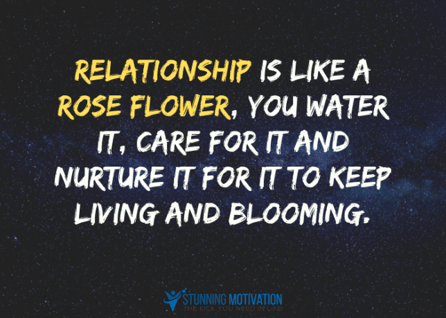 Relationship is like a rose flower, you water it, care for it and nurture it for it to keep living and blooming.