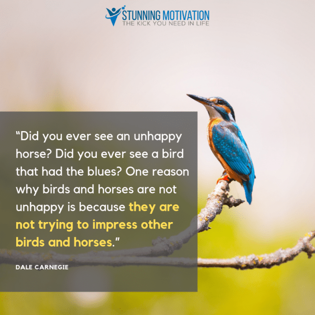 """Did you ever see an unhappy horse? Did you ever see a bird that had the blues? One reason why birds and horses are not unhappy is because they are not trying to impress other birds and horses."""