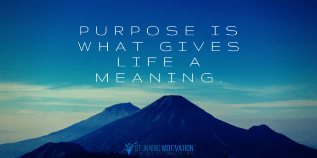 Purpose gives life a meaning.